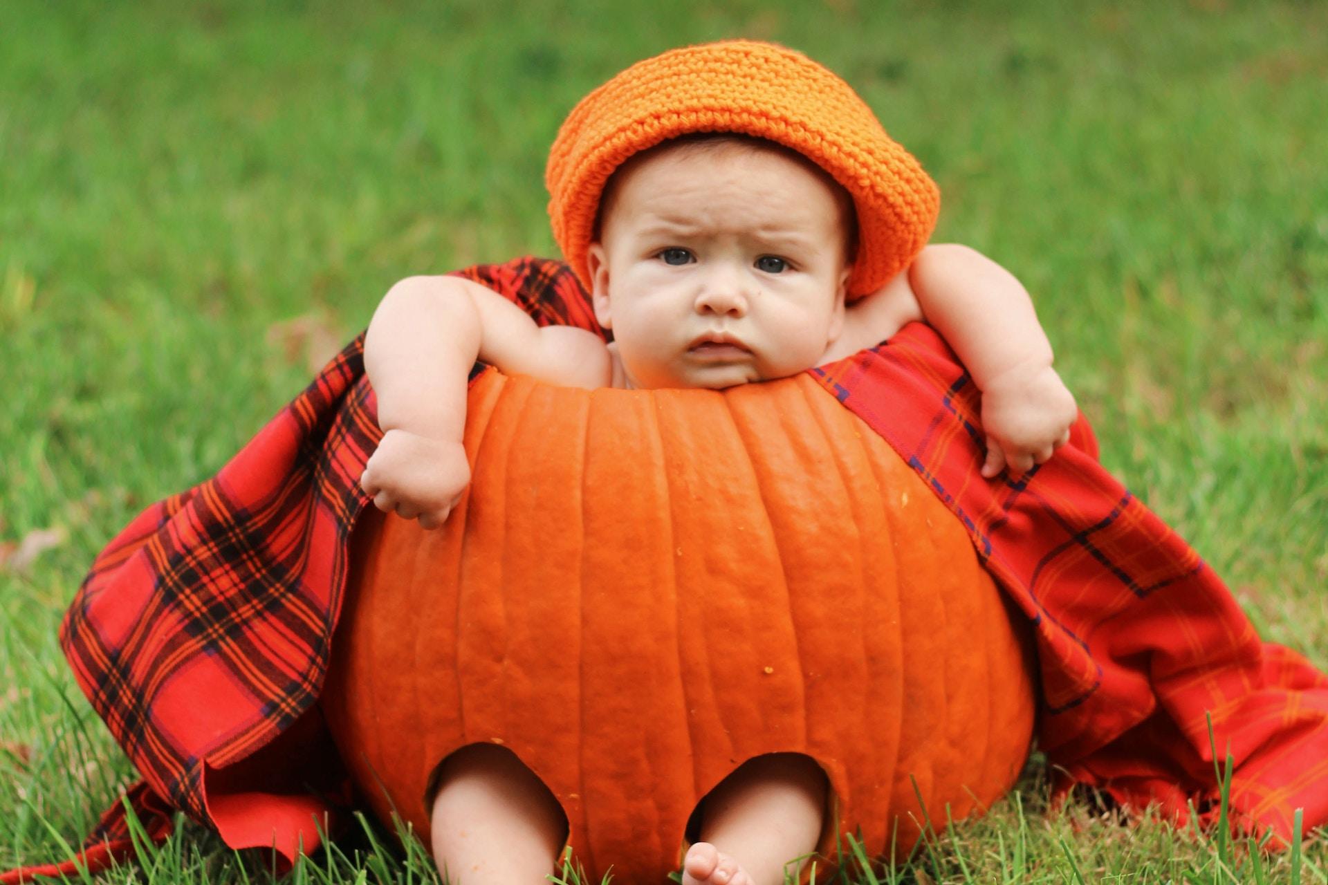 Tutte le attività laBanda coop per un autunno caldo e ricco di novità!
