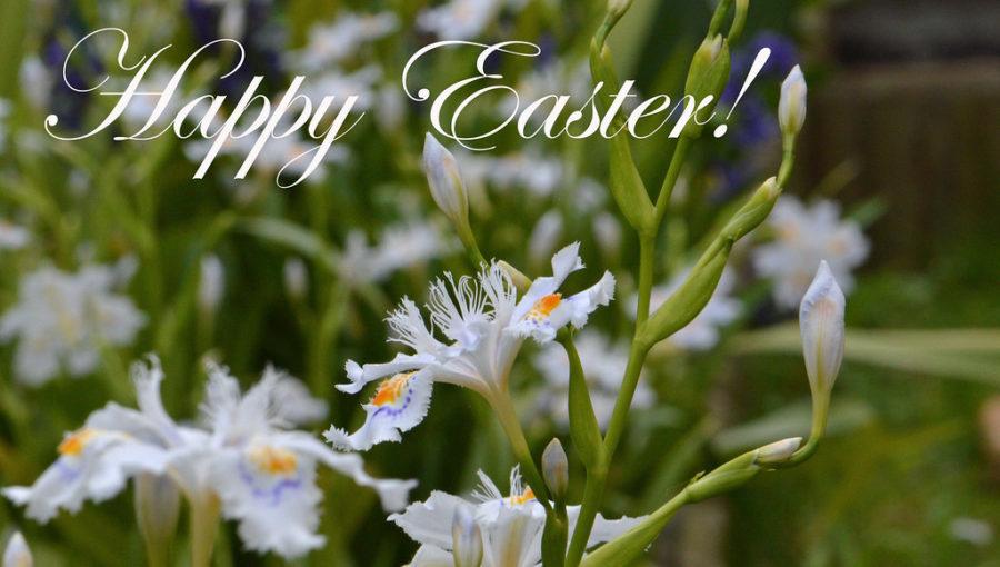 Weekend di ponti, gite e tanto altro! Ecco tante idee …. Buona Pasqua e Pasquetta!!!