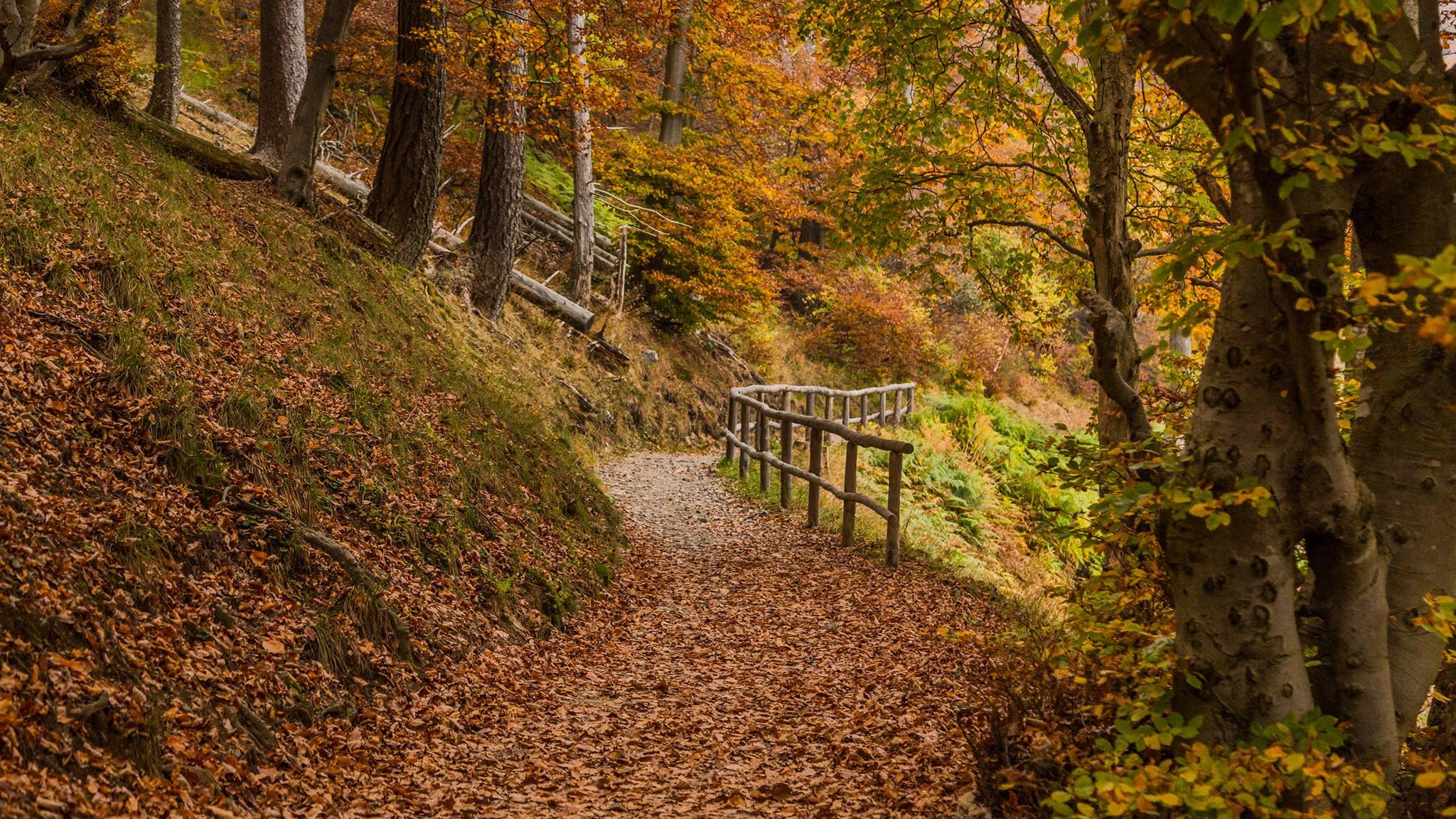 Weekend con i bambini…. Passeggiate d'autunno!? Si grazie!